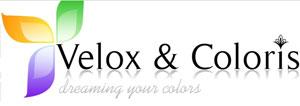 Velox & Coloris, S.A - Sistemas Tintométricos